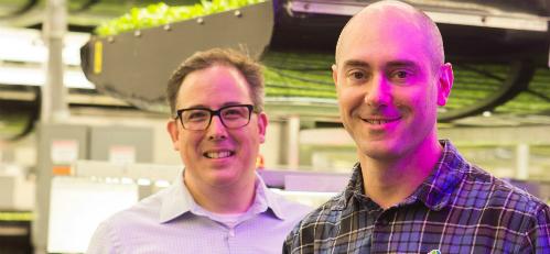 Startup trồng cây không cần đất và ánh sáng mặt trời