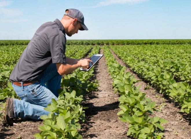 RIPE cho phép thu thập các dữ liệu quan trọng của nông sản.