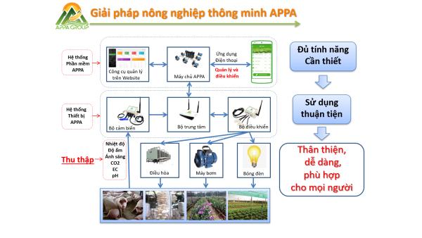 APPA Group