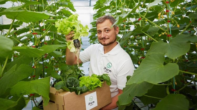 Dự án khởi nghiệpiFarm tạo ra nguồn thực phẩm hữu cơ sạch cho các cư dân đô thị dựa trên ứng dụng công nghệ thông tin, khoa học và nông nghiệp.Ảnh: iFarm.
