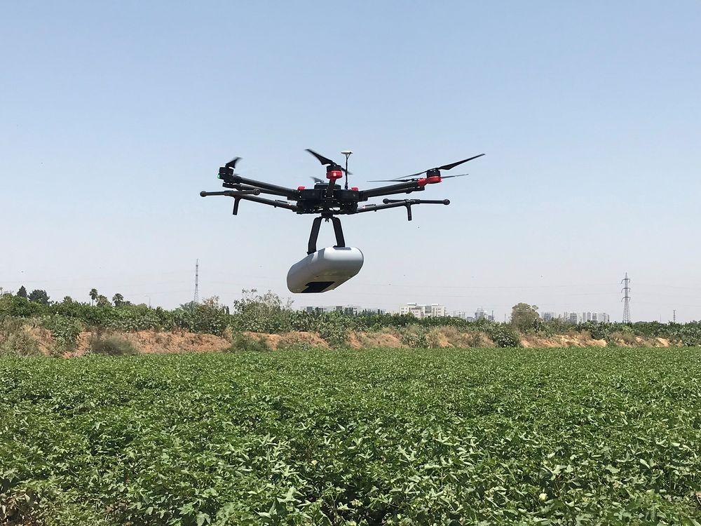 Máy bay không người lái của Taranis có khả năng chụp rõ nét các đặc điểm của côn trùng trên cánh đồng để quyết định thời điểm phun thuốc.